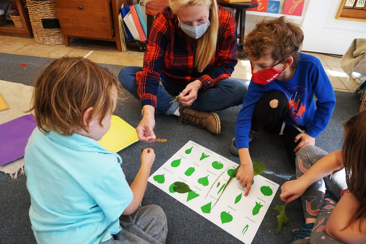 students and teacher identifying leaves in class